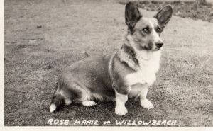Rose Marie of Willowbeach
